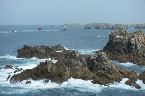 ouessant--2-.jpg