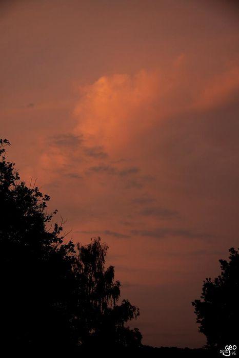 19-06-2012---COUCHANT.JPG