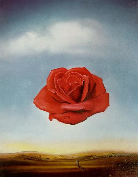 rose meditative salvador dali