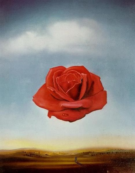 Rose-meditative-Dali.jpg