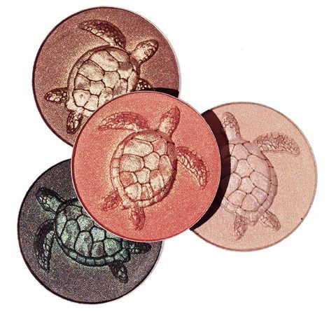 577211042004006ChantecailleSeaTurtlePalette-copie-1.jpg
