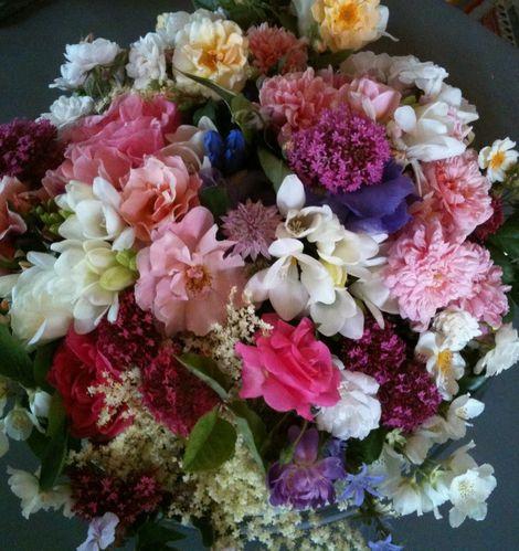 divers fleurs 004