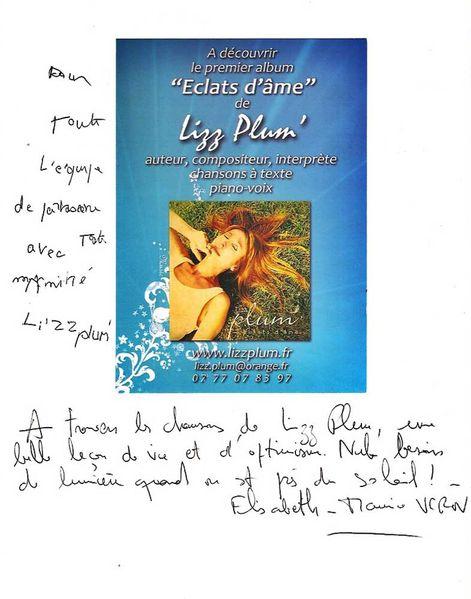 livre-or-Lizz-Plum-page-1