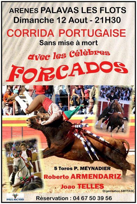 Corrida-Portugaise-Palavas-2012.jpg