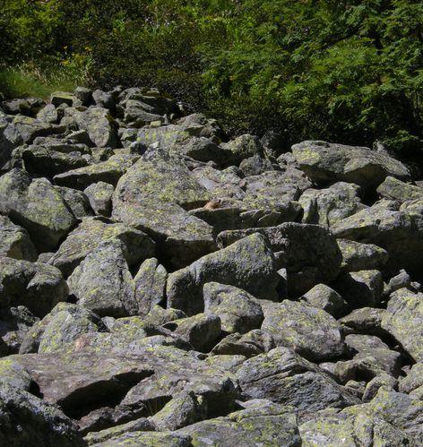 Merens-les-Vals-10.jpg