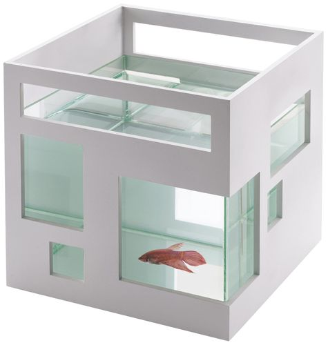 Aquarim Fish Hotel Umbra