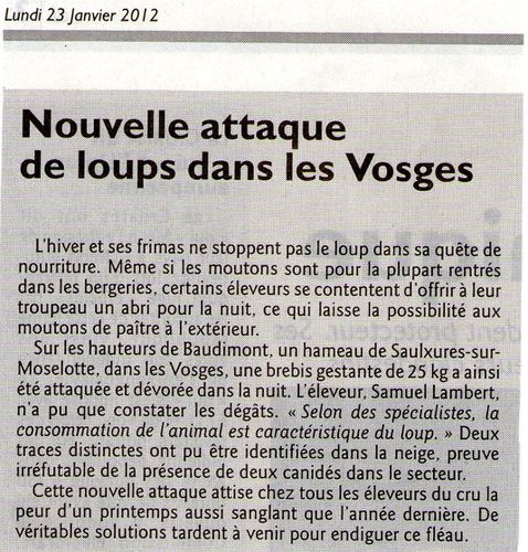 Loup article RL 24.1.2012