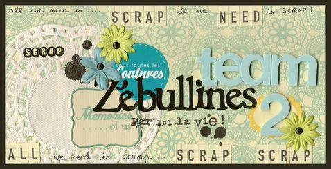 Bannière Zebullines