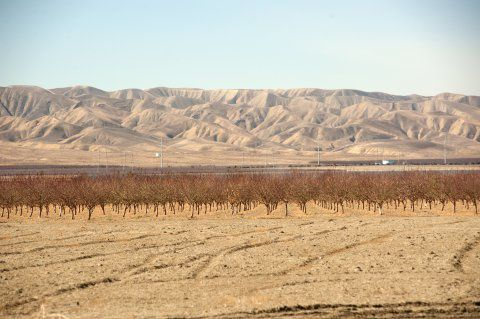 central-valley-drought-california-field
