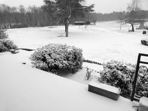 20130120-neige-1ere-001.JPG