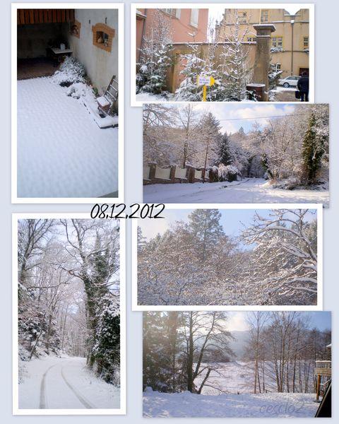 decemb-20122-sous-la-neige.jpg