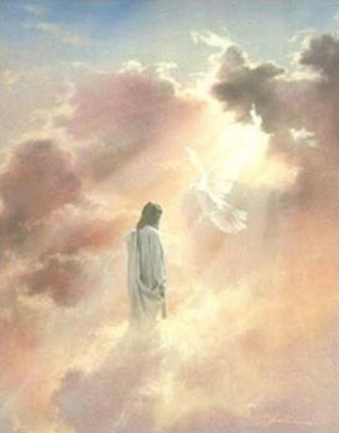 The Ascension of Jesus - Father Melvin - June 19, 2014 ...