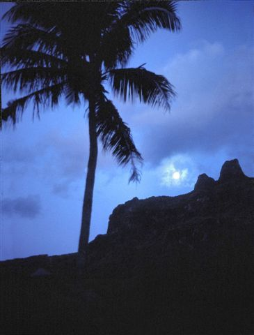 Moorea by night