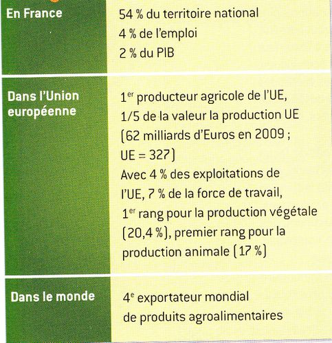Tableau-chiffre-agriculture-francaise.jpg