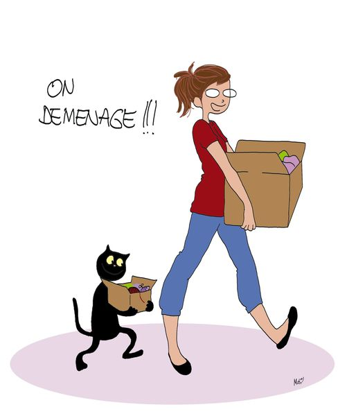 demenage-copie.jpg