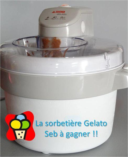 concours-sorbetiere-gelato-seb.jpg