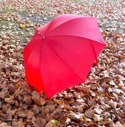 parapluie-rouge-octobre.jpeg