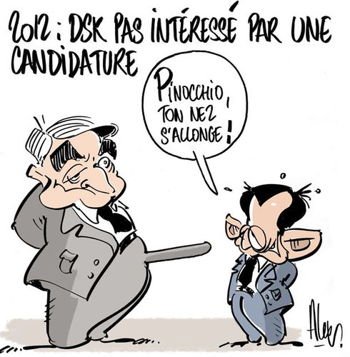 dsk-2012-copie.jpg
