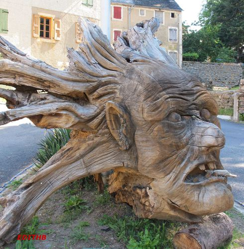 sculpture gigantesque d 39 une tete dans un tronc d 39 arbre a vebron en lozere edithb mes photos. Black Bedroom Furniture Sets. Home Design Ideas