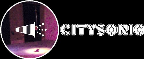 CitySonic10-SITE