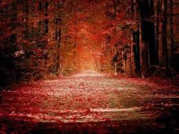 chemin rouge image