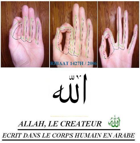 Allah inscrit en Arabe dans la Main 2