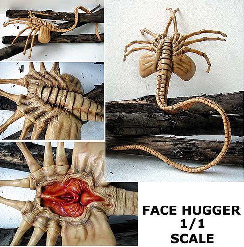 alien face hugger