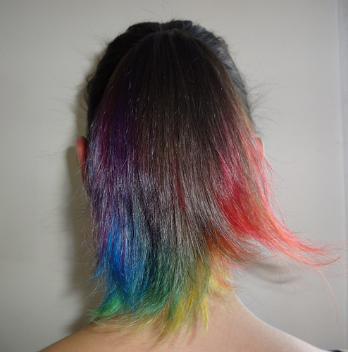 rainbow-ponytail.png