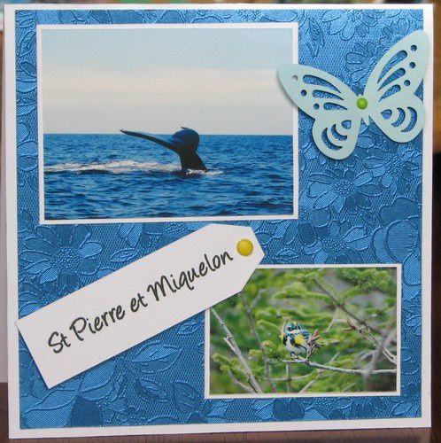 Carte-St-Pierre-et-Miquelon-7591.JPG