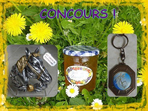 Mo concours