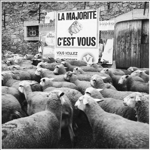 moutons-c-est--vous.PNG