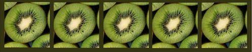 Bandeau Kiwi