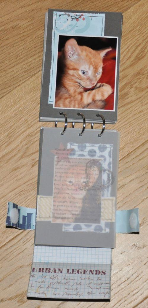 ARISTOCHATS-016-copie-1.jpg