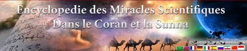 Encyclopedie--Miracles-Coran-Sunna-2.jpg