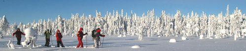 finlande traces marcher
