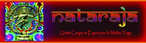blog Nataraja