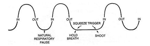 cycle-respiration