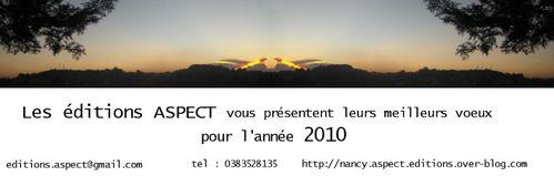 carte voeux 2010 aspect