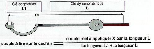 dynamo6