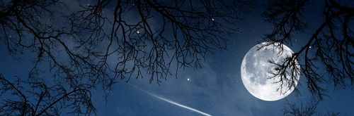 Пейзаж, night, moon, luna, sky, trees, view, nature w