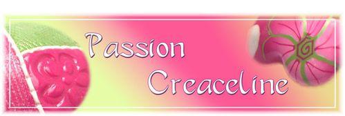 logo-passion-creaceline.jpg
