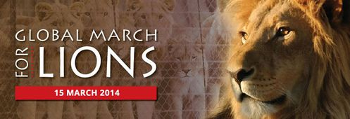 GlobalMarch4Lions-fbanner