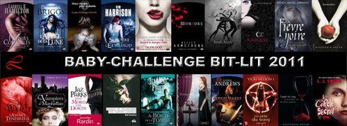 baby challenge bit-lt