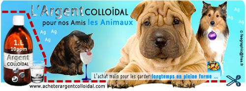 Argent-colloidal-animaux.jpg