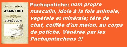 encyclopédie pachapotiche