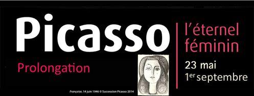 Picasso bandeau prolongation