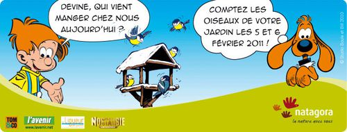 highlight_Devine_qui_oiseau.jpg