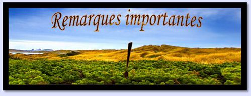 Remarques-importantes.JPG