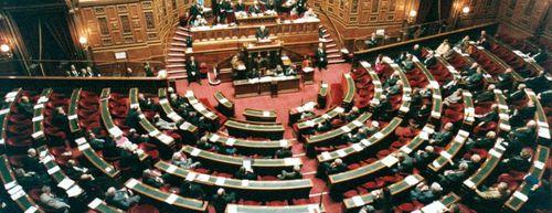 senat-2-copie-1.jpg