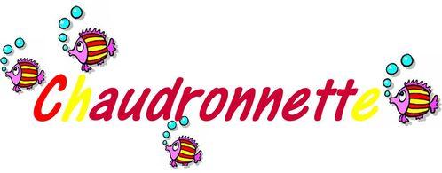 chaudronnette013
